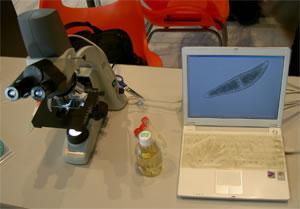 顕微鏡.jpg