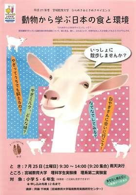 hirameki2015_omote.jpg